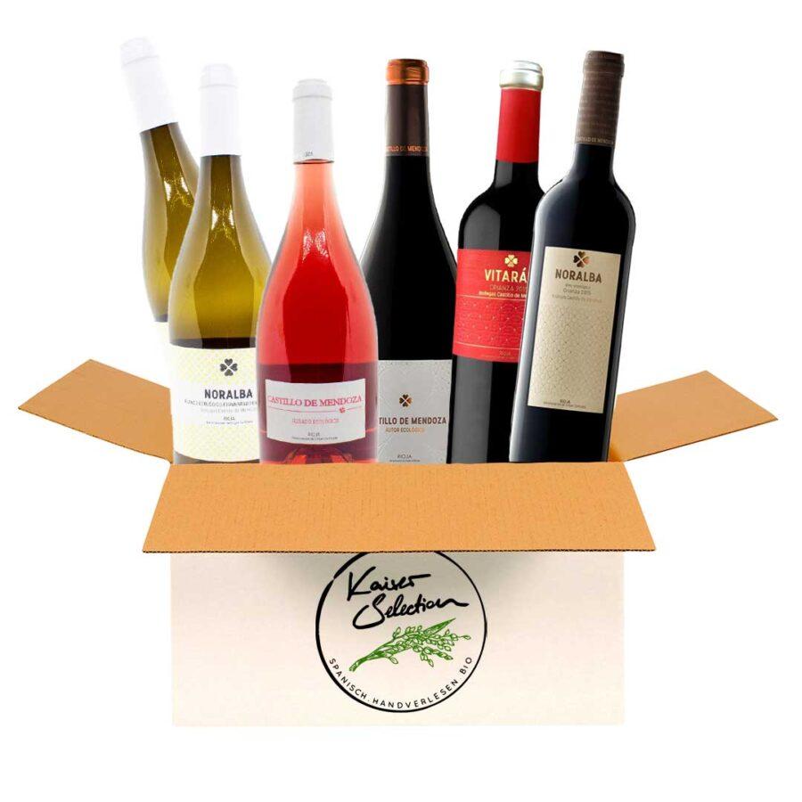 Weinpaket-Castillo